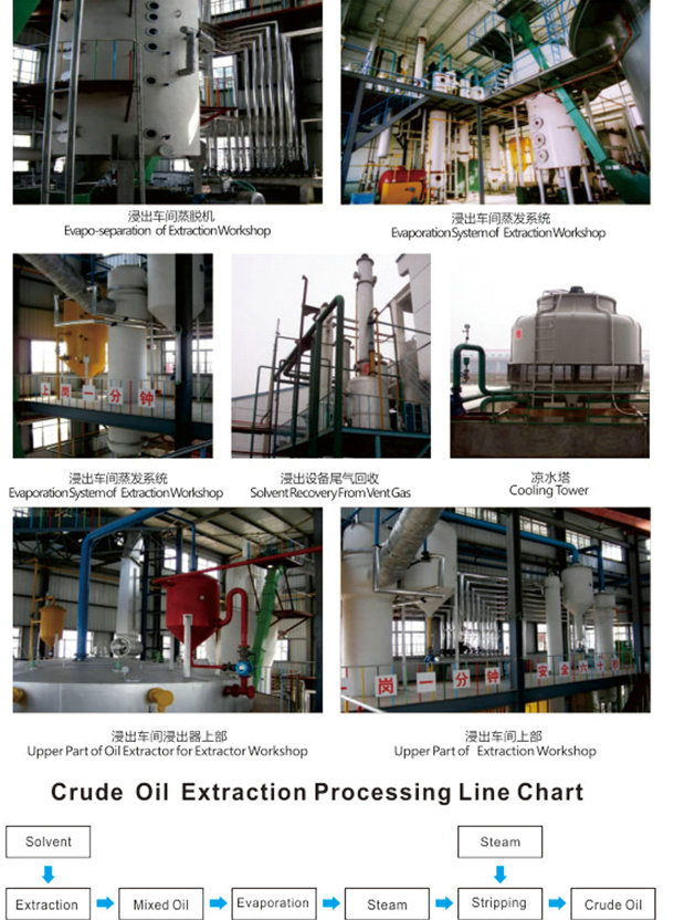 Crude Oil Extraction Processing Line