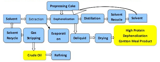 cottonseed oil extraction flow.jpg