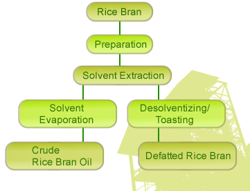 rice bran solvent extraction.jpg