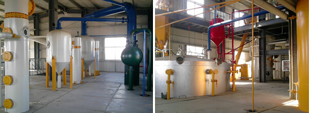 rice bran solvent extraction workshop.jpg