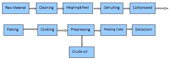cottonseed oil press machine process.jpg