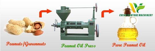 peanut oil refinery