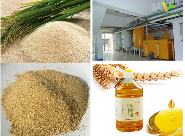 rice bran oil refinery
